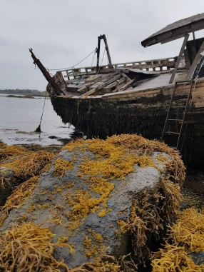 ile-de-mull-the-bergamote-blog4